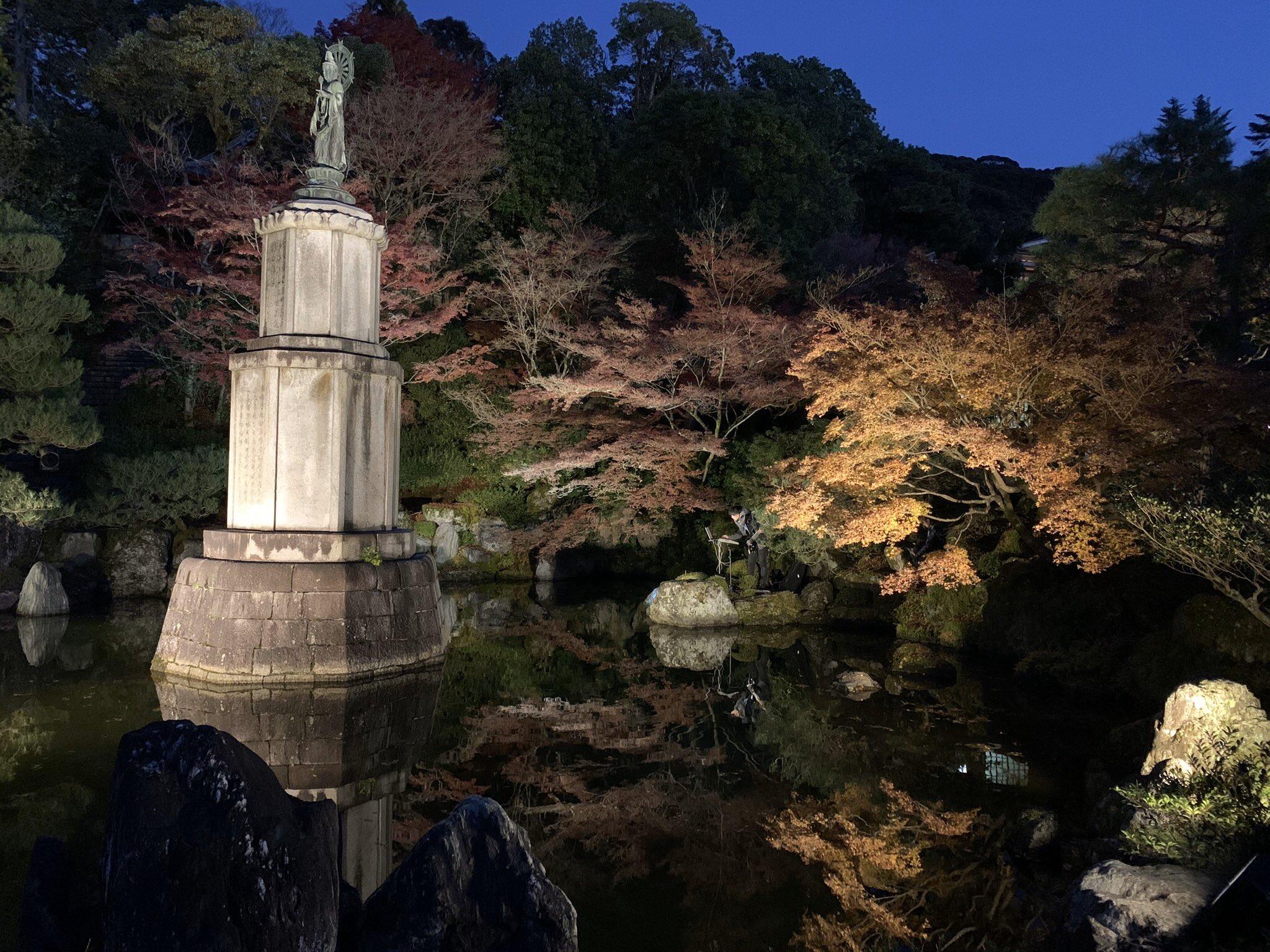 Junya Oikawa yadorine.jpg
